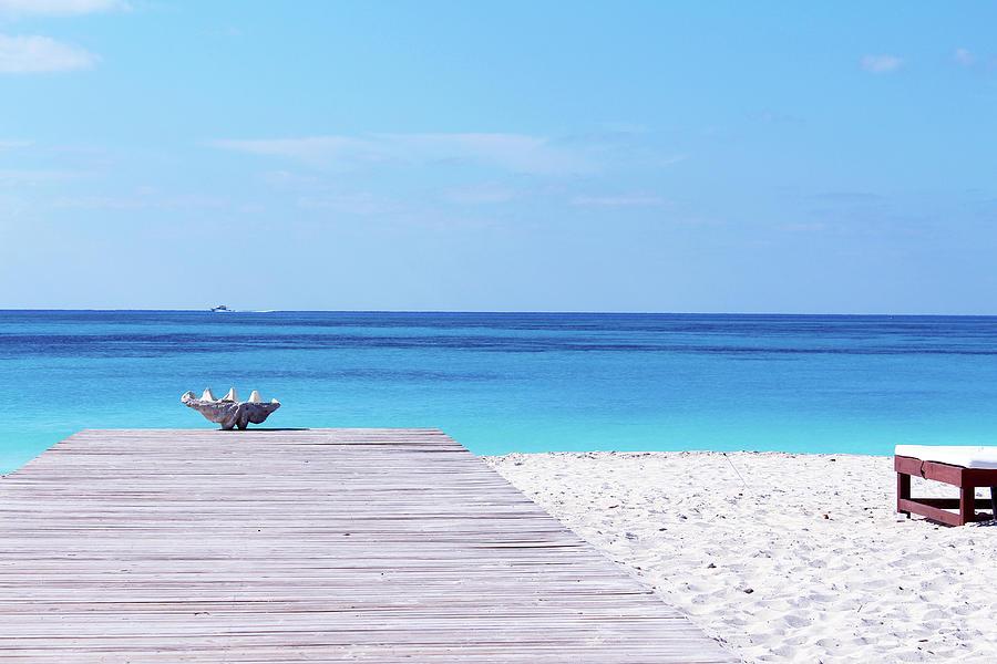 Bimini Beach Club by Samantha Delory