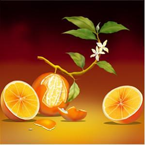 Biological Orange Painting by Alain Khadem