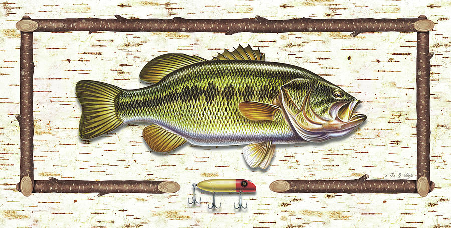 Birch Bass Painting by JQ Licensing