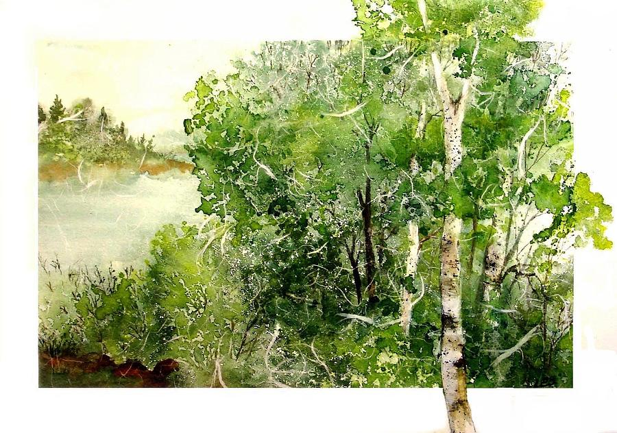 Birch Lake 2 by Pamela Lee