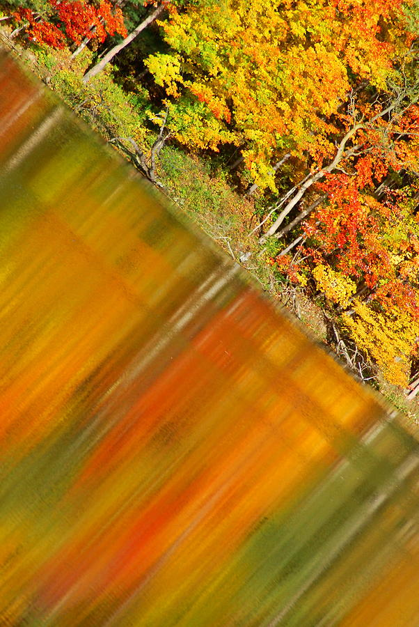 Fall Photograph - Birch Reflection by Emily Stauring