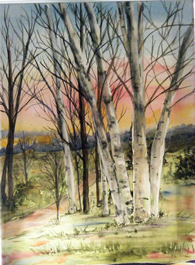 Trees Painting - Birch Trees on Canvas by Diane Ziemski