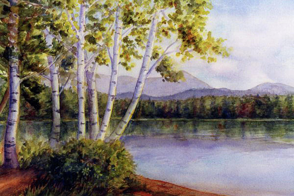 Birches at White Lake by Janet Zeh