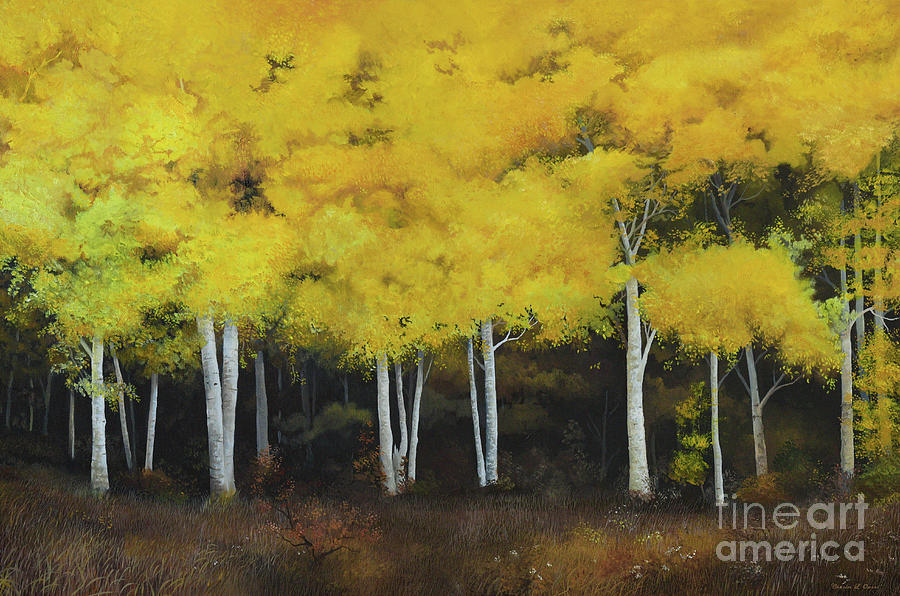 Birches by Charles Owens