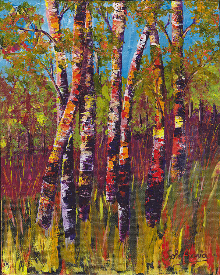 Birches by Sole Avaria