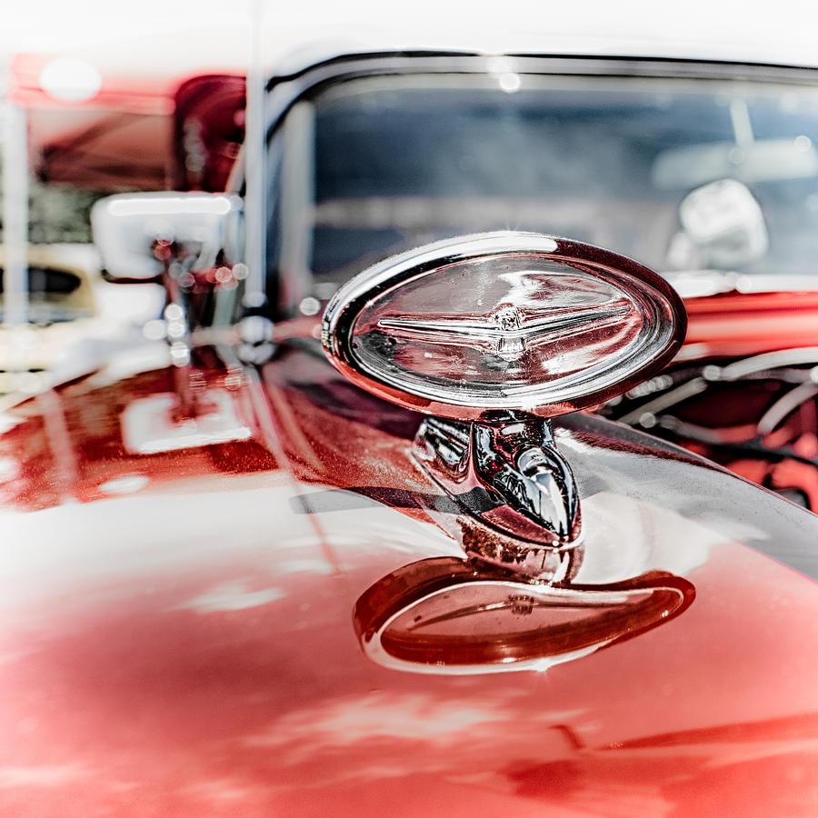 Car Photograph - Bird Aloft by Scott Wyatt