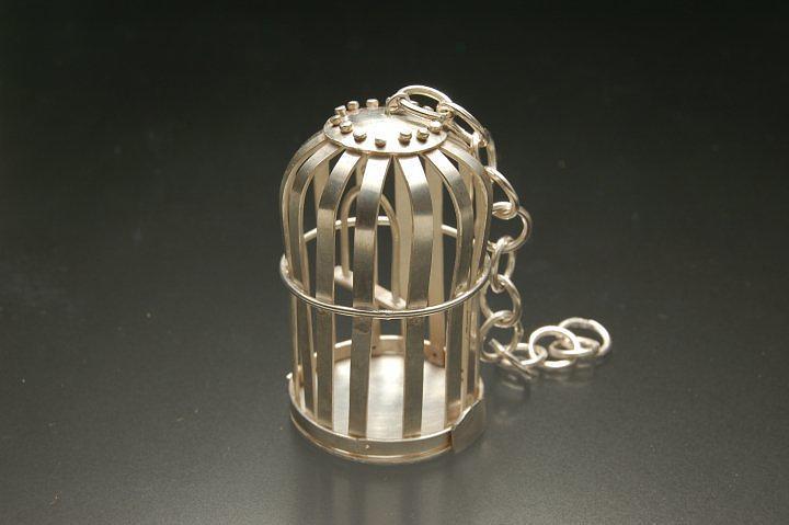 Bird Cage Jewelry - Bird Cage by Ciera Duran