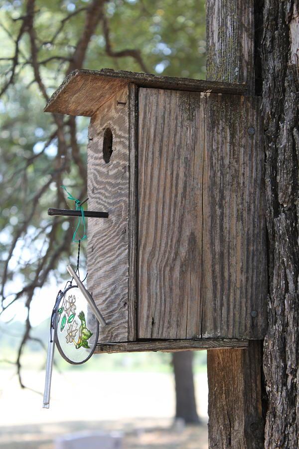 Bird Photograph - Bird House by PhotoPhotopia Melody Fulton