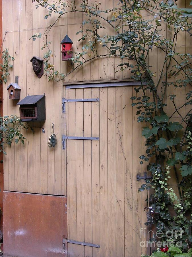 Bird Houses by Jim Goodman