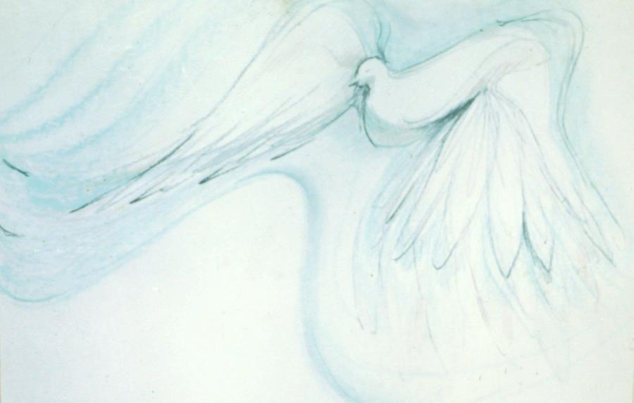 Bird Drawing - Bird In Flight by Denise Fulmer