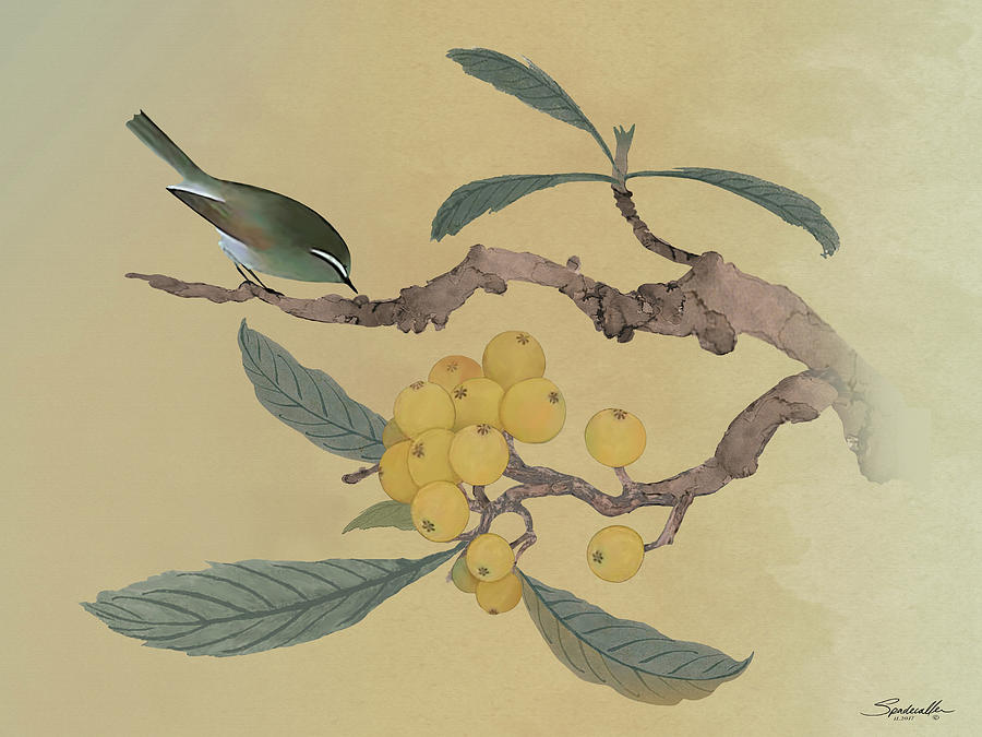 Japanese Plum Digital Art - Bird In Loquat Tree by M Spadecaller