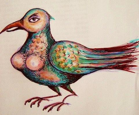 Drawing Drawing - Bird-lady by Rae Chichilnitsky