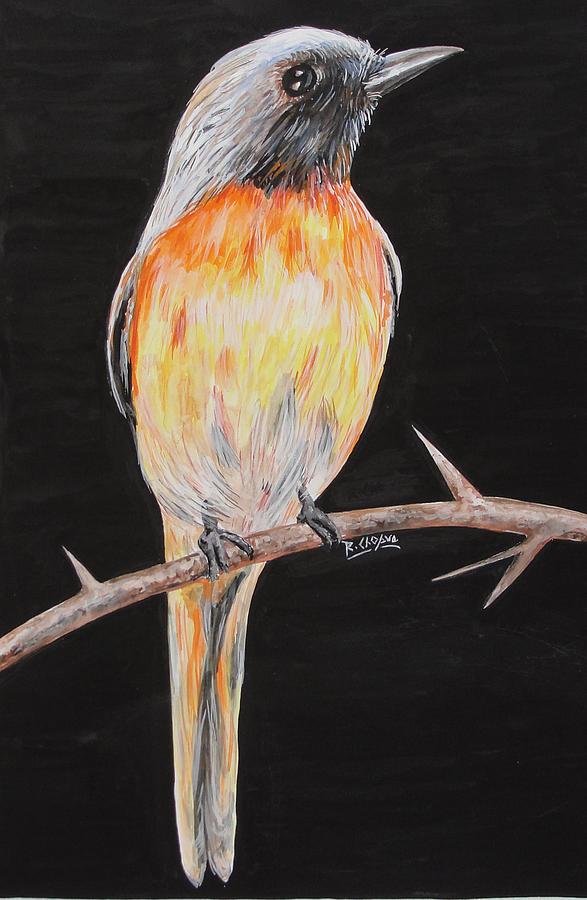 Bird Painting - Bird Minivet by Rajesh Chopra