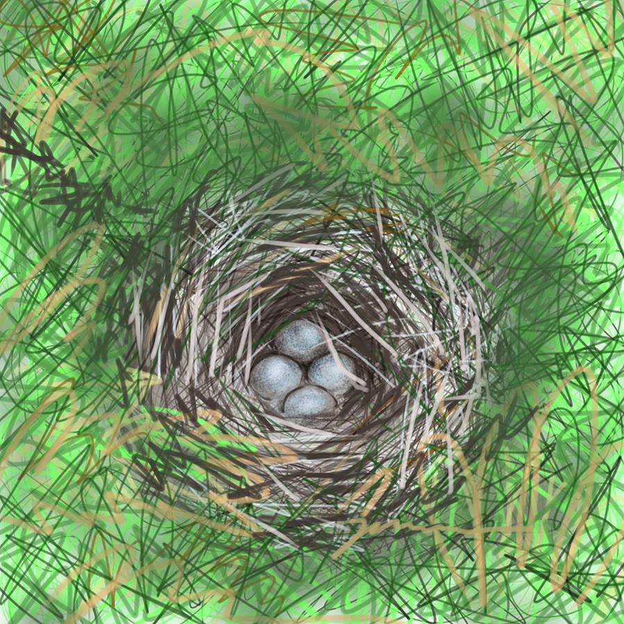 Bird Nest by Jean Pacheco Ravinski