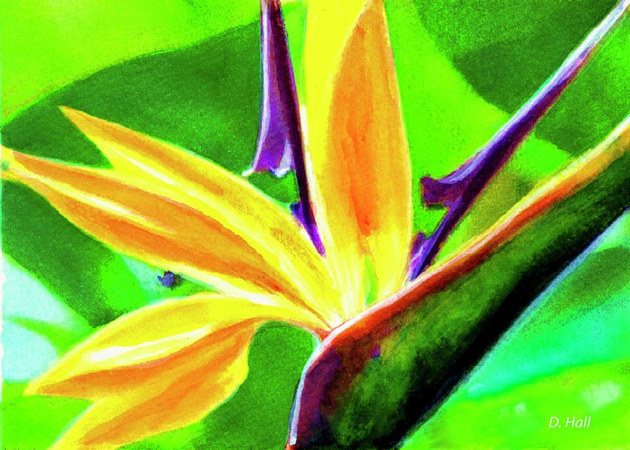 Plumeria Painting - Bird Of Paradise #262 by Donald k Hall