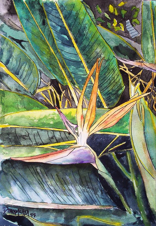 Watercolor Painting - Bird of Paradise by Derek Mccrea