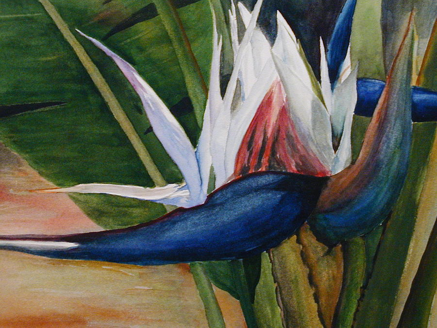 Flower Painting - Bird Of Paradise by Dwight Williams