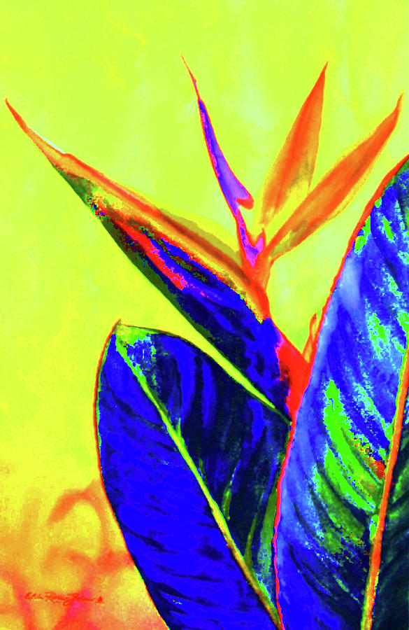 Watercolor Paintings Painting - Bird Of Paradise by Estela Robles