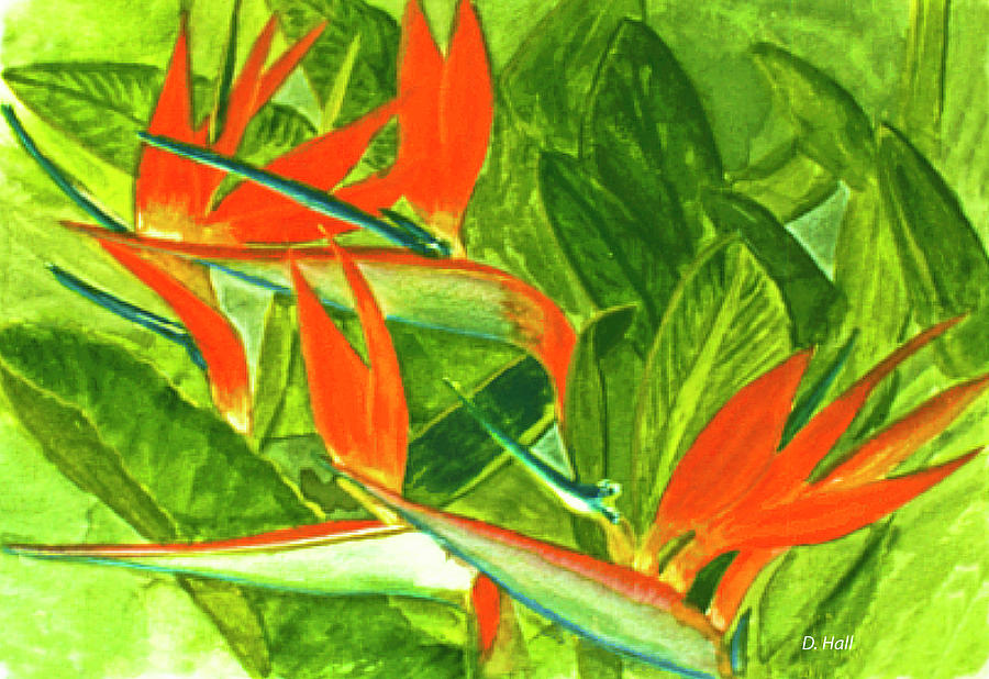 Bird Of Paradise Painting - Bird Of Paradise Flower #55 by Donald k Hall