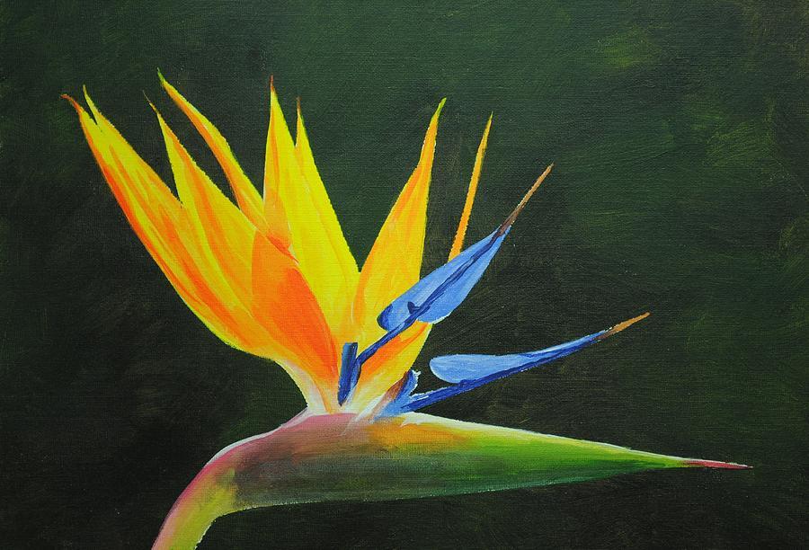 Acrylic Painting - Bird Of Paradise Flower by Nolan Clark