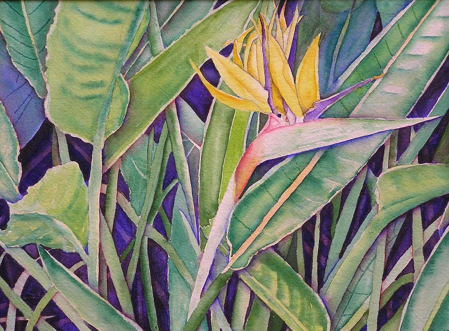 Tropical Painting - Bird Of Paradise by Laurie Balla