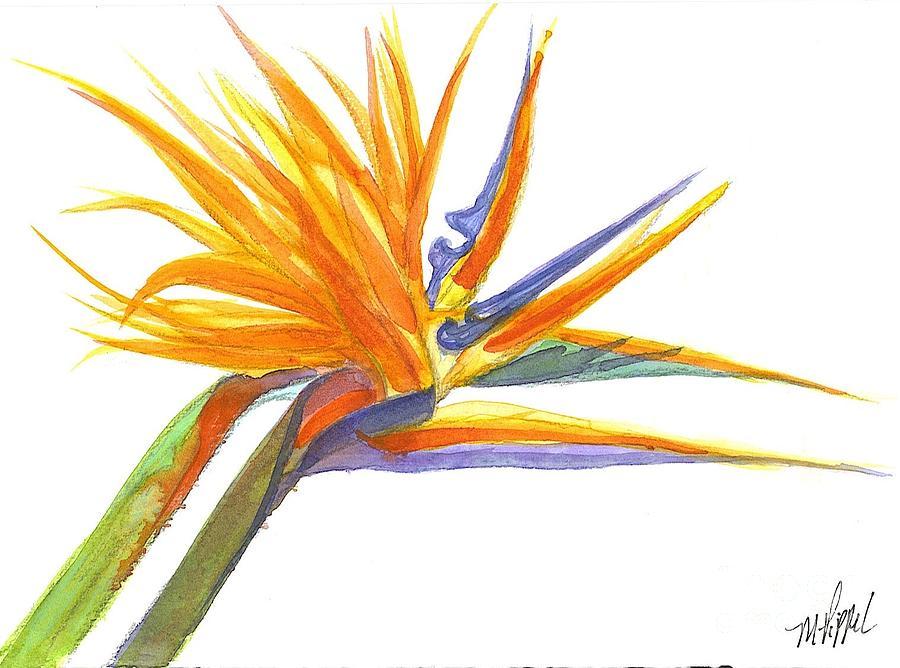 Bird Of Paradise Painting - Bird Of Paradise by Midge Pippel