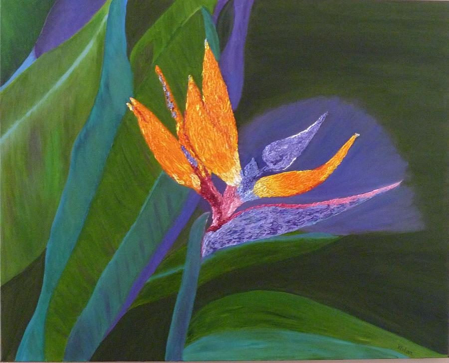 Bird Of Paradise Painting - Bird Of Paradise by Vivian Stearns-Kohler