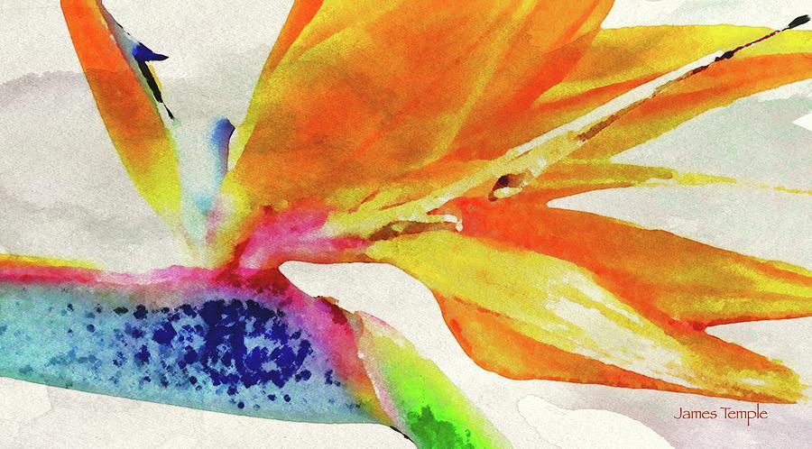 Digital Watercolor Digital Art - Autumn In Hawaii by James Temple