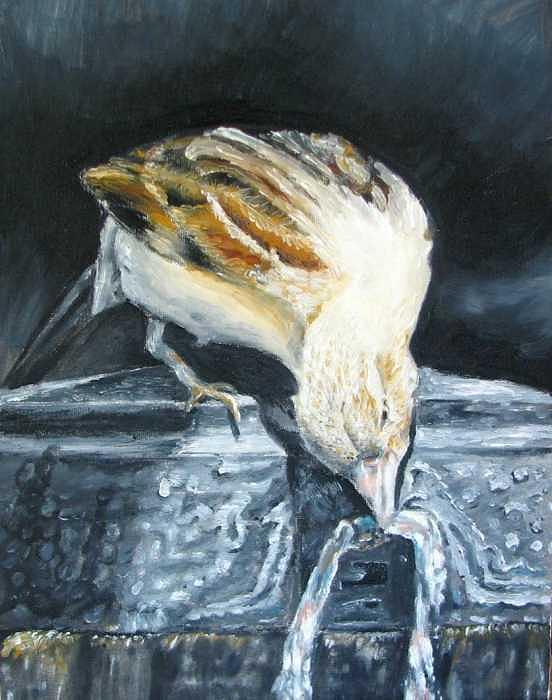 Bird Painting - Bird Original Oil Painting by Natalja Picugina