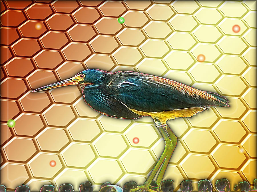 Bird Digital Art - Bird Ponders The Disappearing Bees And Several Biological Markers Left In The Hive by Wendy J St Christopher