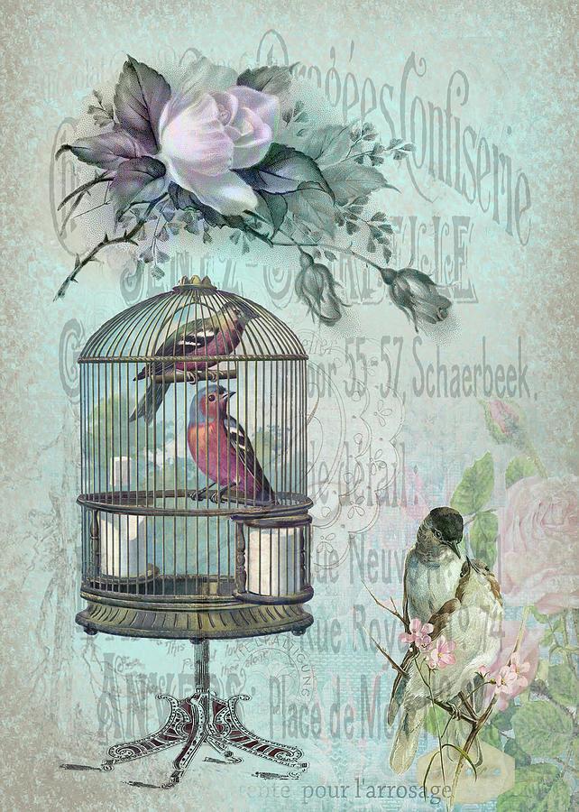 Birdcage Digital Art - Birdcage Blossom by Sarah Vernon