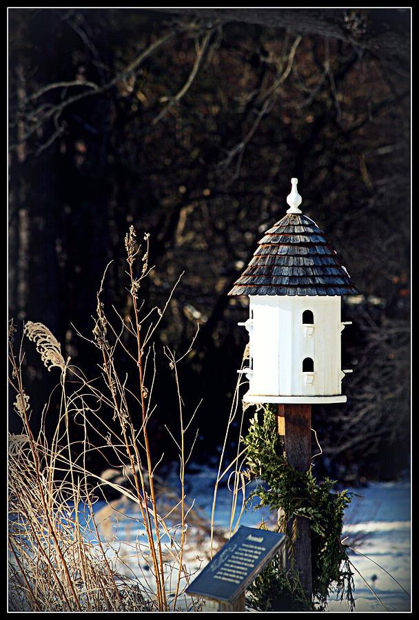 Birdhouse Photograph - Birdhouse by Elizabeth Babler