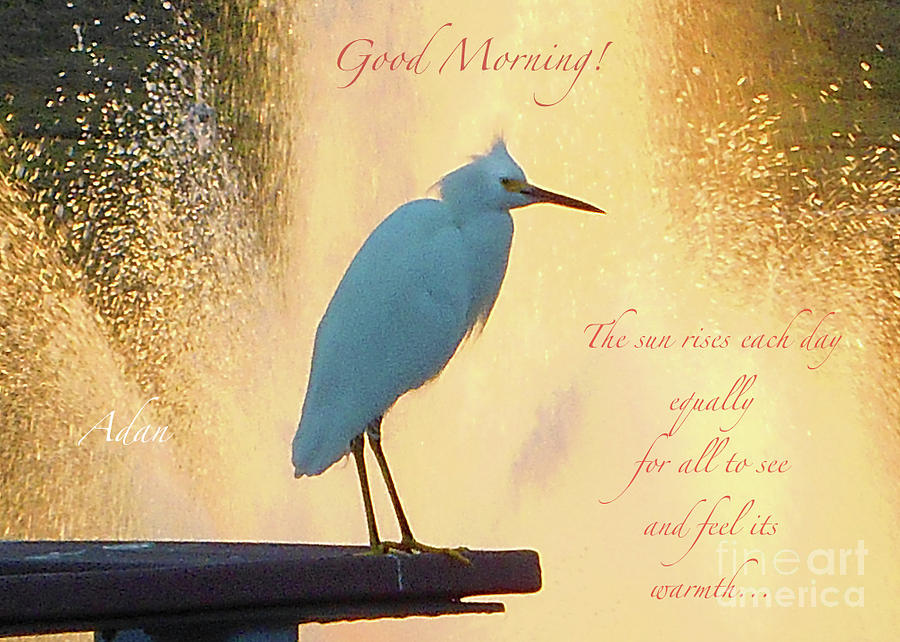 Butler Park Photograph - Birds And Fun At Butler Park Austin - Birds 3 Detail Macro Poster - Good Morning by Felipe Adan Lerma