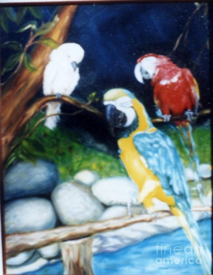 Macaws Painting - Birds At Rest by Beverly Hanni