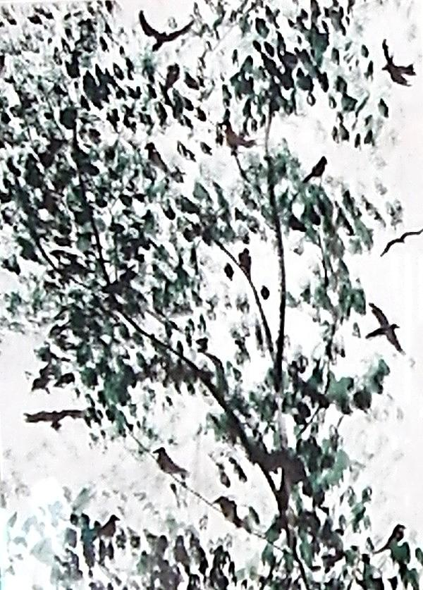Birds Painting - Birds At Sundown I by Caroline  Urbania Naeem