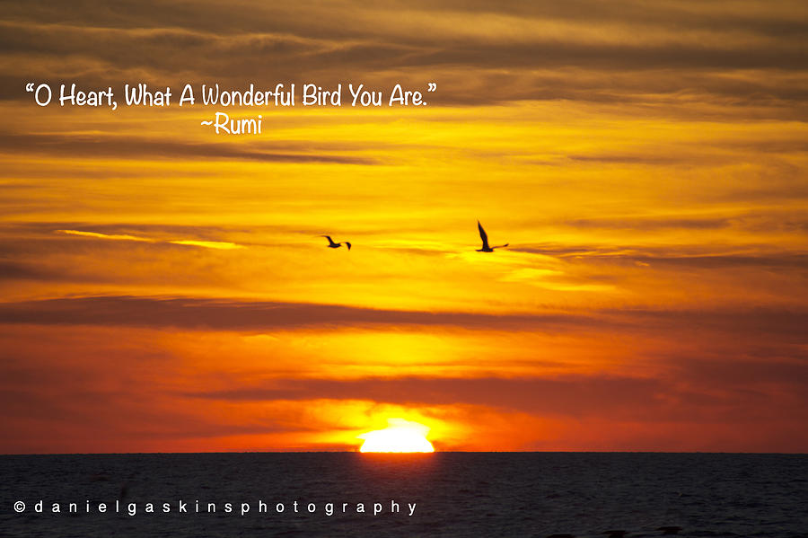 Birds At Sunset With Rumi Quote Photograph By Daniel Gaskins