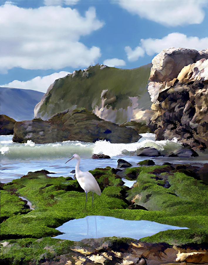 Ocean Photograph - Birds Eye View by Kurt Van Wagner