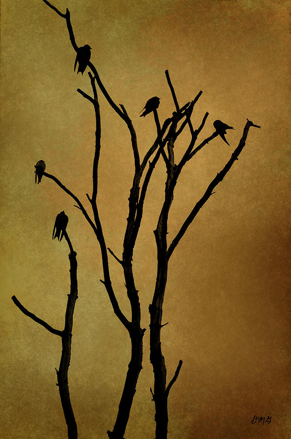 Birds Photograph - Birds In Tree by Dave Gordon