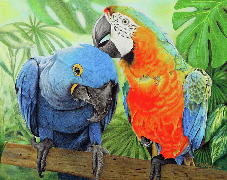 Birds Drawing - Birds Of A Feather by Terry Mellway