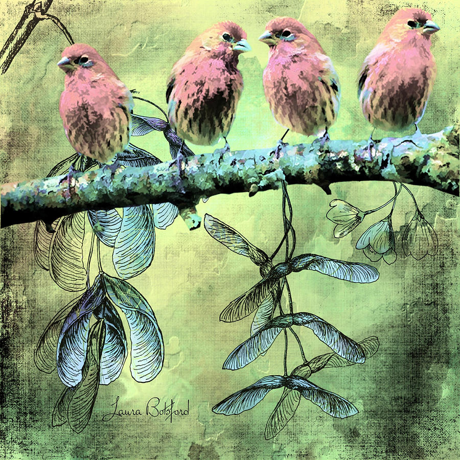 Birds Digital Art - Birds of Like Minded Feathers by Laura Botsford