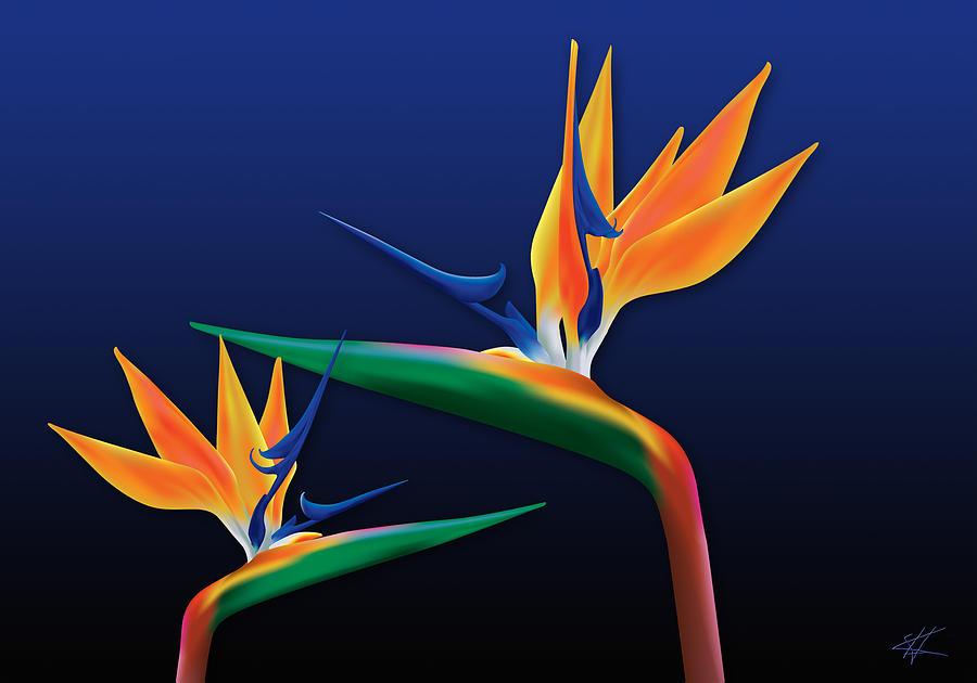 Tropical Digital Art - Birds Of Paradise by Kenneth Armand Johnson