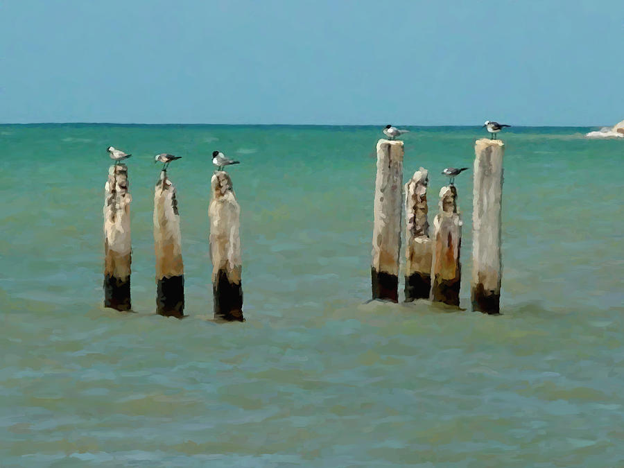 Water Birds Painting - Birds On Sticks by David Van Hulst