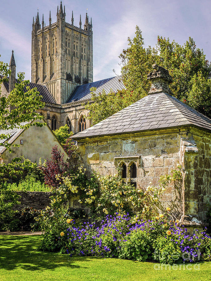 Bishops Palace Photograph - Bishops Palace Gardens - Wells England by Lexa Harpell