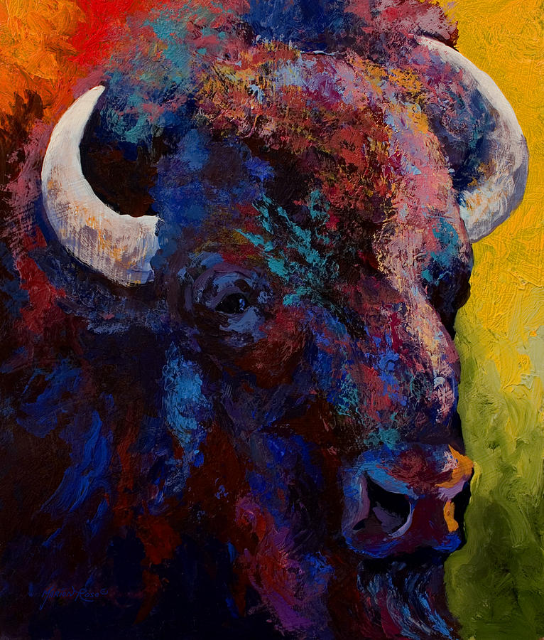 Bison Painting - Bison Head Study by Marion Rose