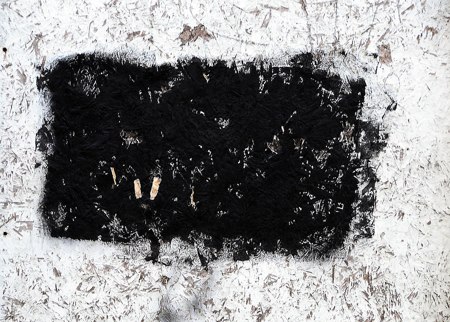 Black Photograph - Black And White Abstraction by JoAnn Lense