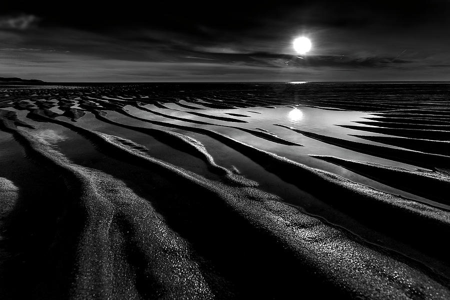 Black and White Beach - Low Tide by Dapixara Art