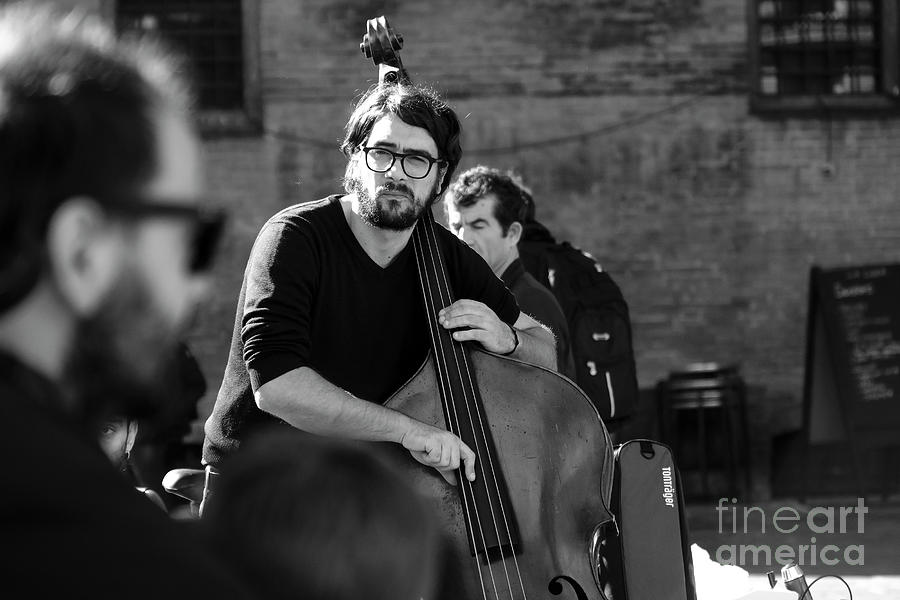 Artists Photograph - Black And White Contrabass Player by Luca Lorenzelli