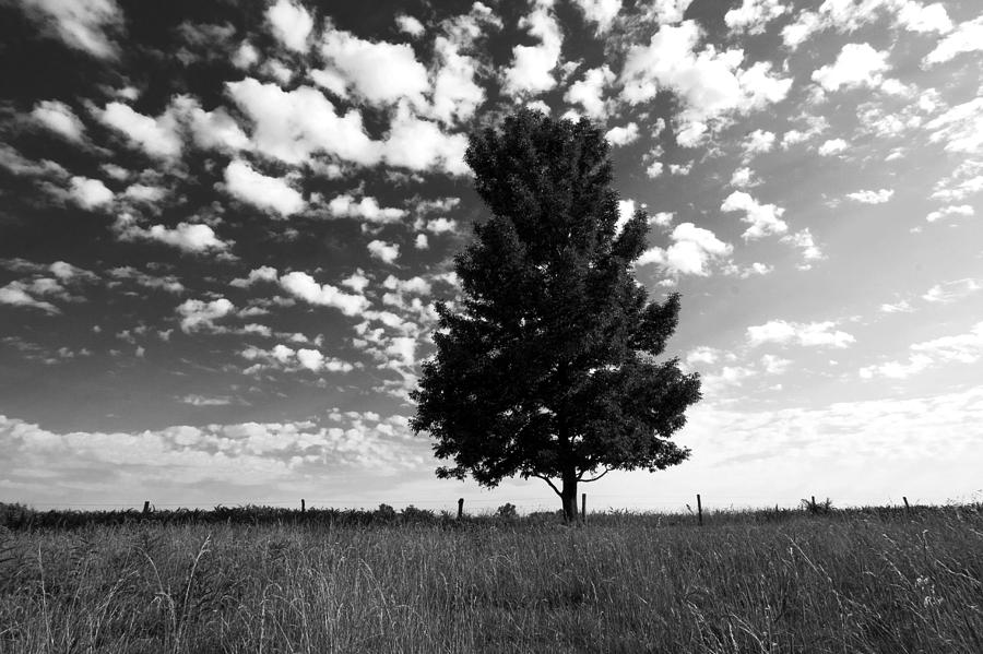 Black And White Country Photograph