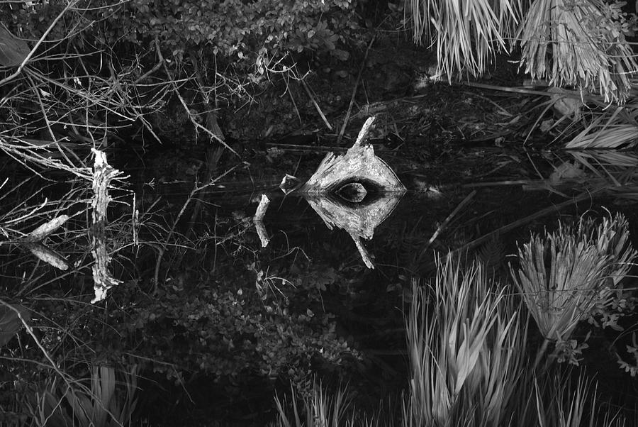 Cyclops Photograph - Black And White Cyclops by Rob Hans
