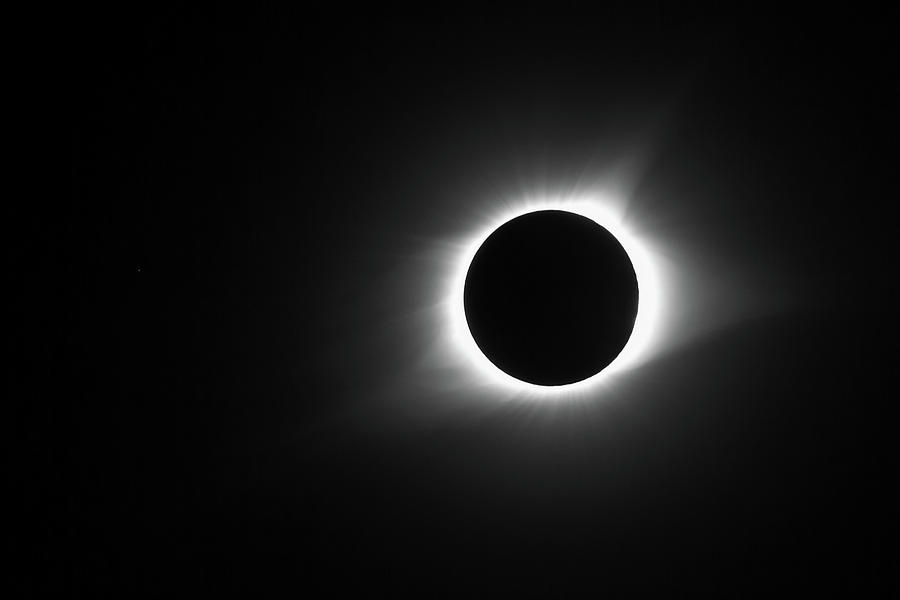 Black And White Eclipse Totality Photograph